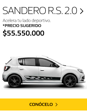 Renault Clio Medell�n
